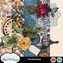 Thankfulness_01_small