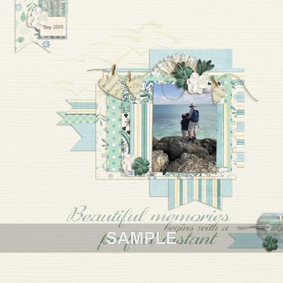 Beautiful_memories_combo_05