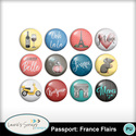 Mm_passportfranceflair_small