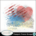 Mm_passportfrancegrunge_small