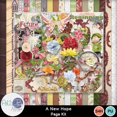 Pbs_a_new_hope_pkall