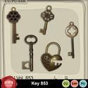 Key853_small