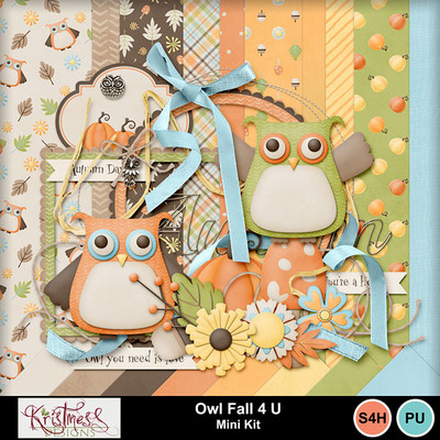 Owlfall4u_01