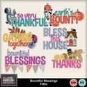 Aimeeh_bountifulblessings_ti_small