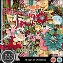 12_days_of_christmas_kit_small