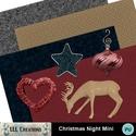 Christmas_night_mini01_small