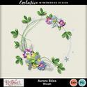 Auroraskies_wreath_ex_small