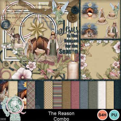 Thereason_combo1-1
