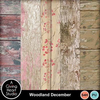 Agivingheart-woodlanddecember-wpweb