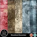 Agivingheart-woodlanddecember-mpweb_small