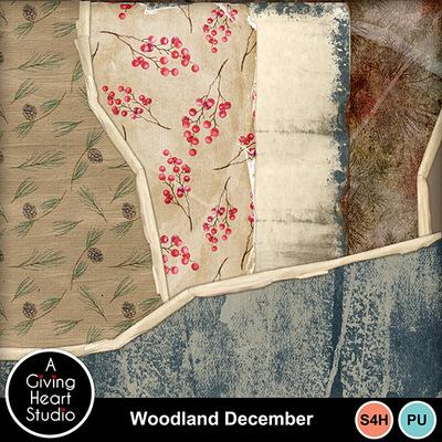 Agivingheart-woodlanddecember-tpweb