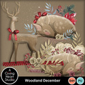 Agivingheart-woodlanddecember-clusters-web_small