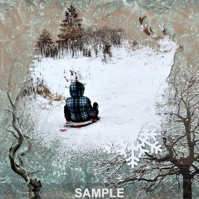 Winter_in_the_woods_png_masks-02