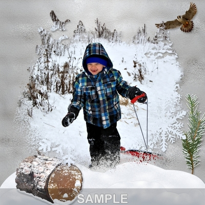 Winter_in_the_woods_png_masks-03
