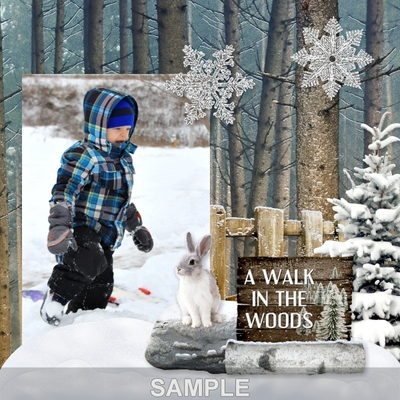 Winter_in_the_woods_signs-02
