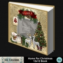 Home_for_christmas_12x12_book-001a_small