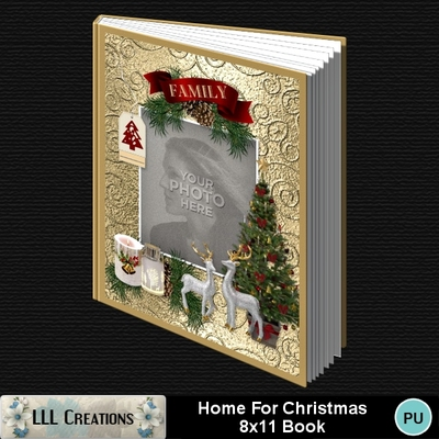 Home_for_christmas_8x11_book-001a