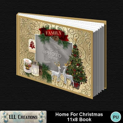 Home_for_christmas_11x8_book-001a