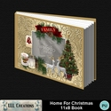 Home_for_christmas_11x8_book-001a_small