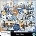 Cozy_winter1_small