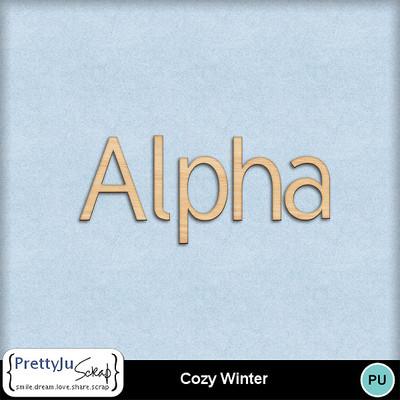 Cozy_winter3