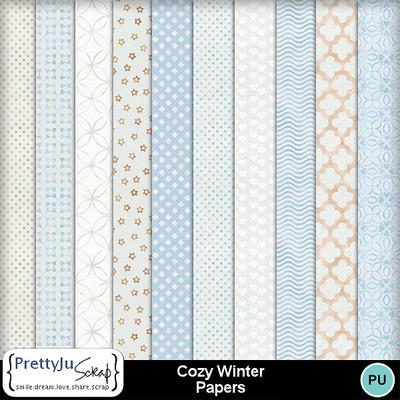 Cozy_winter_pp