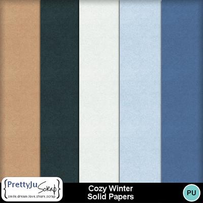 Cozy_winter_solid