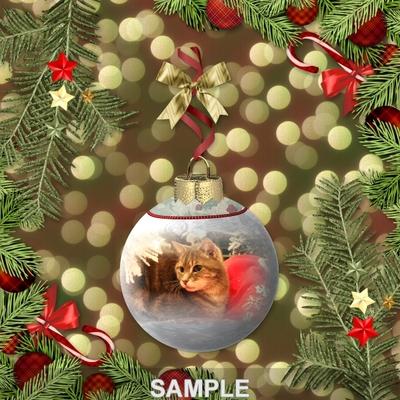 Christmas_photo_ornaments-08