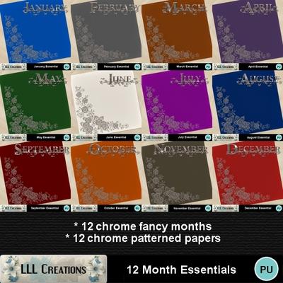 12_month_essentials-01