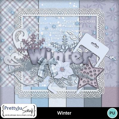 Winter_pv