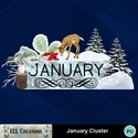 January_cluster-01_small