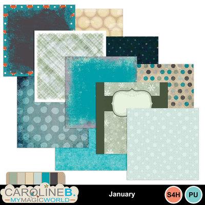 January_pp_1
