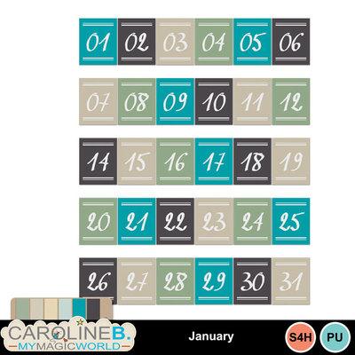 January_el_3