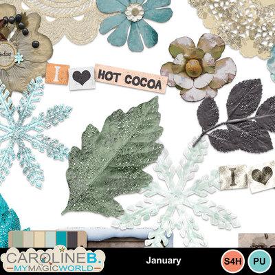 January_el_4