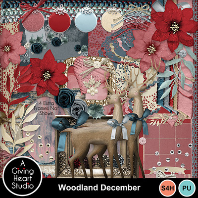 Agivingheart-woodlanddecember-elweb