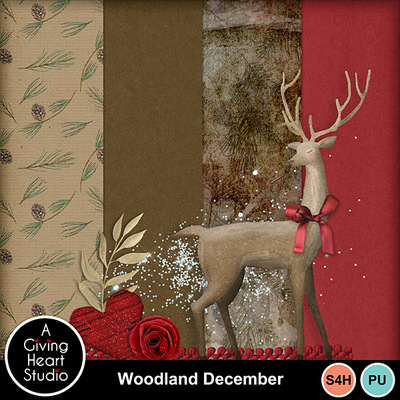 Agivingheart-woodlanddecember-chall_web