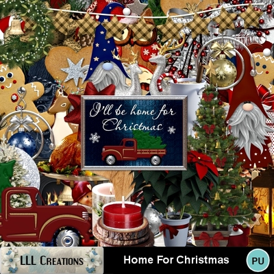 Home_for_christmas-01