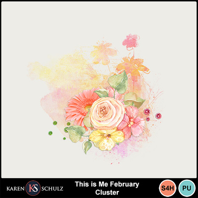 This_is_me_february_cluster-1