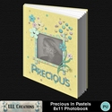 Precious_in_pastels_8x11_photobook-001a_small