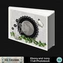 Ebony_and_ivory_11x8_photobook-001a_small