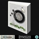 Ebony_and_ivory_8x11_photobook-001a_small