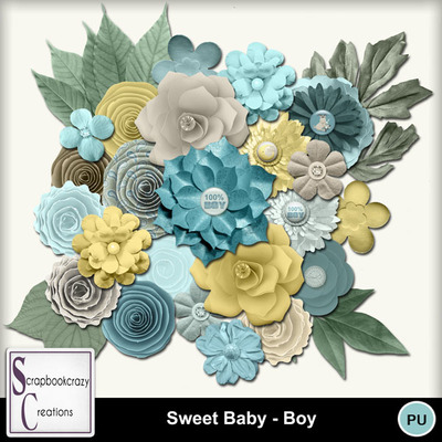 Scr-sb-boy-flowers