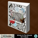 Winter_in_the_woods_8x11_book-001a_small