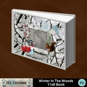 Winter_in_the_woods_11x8_book-001a_small