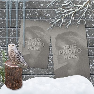 Winter_in_the_woods_12x12_book-002