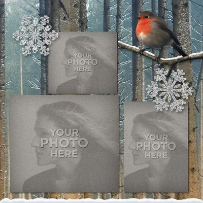 Winter_in_the_woods_12x12_book-008