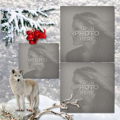 Winter_in_the_woods_12x12_book-011