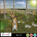 Louisel_mix67_pv_small