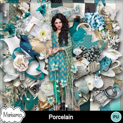 Msp_porcelain_pvmms