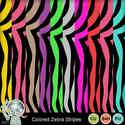 Coloredzebrastripes1-1_small